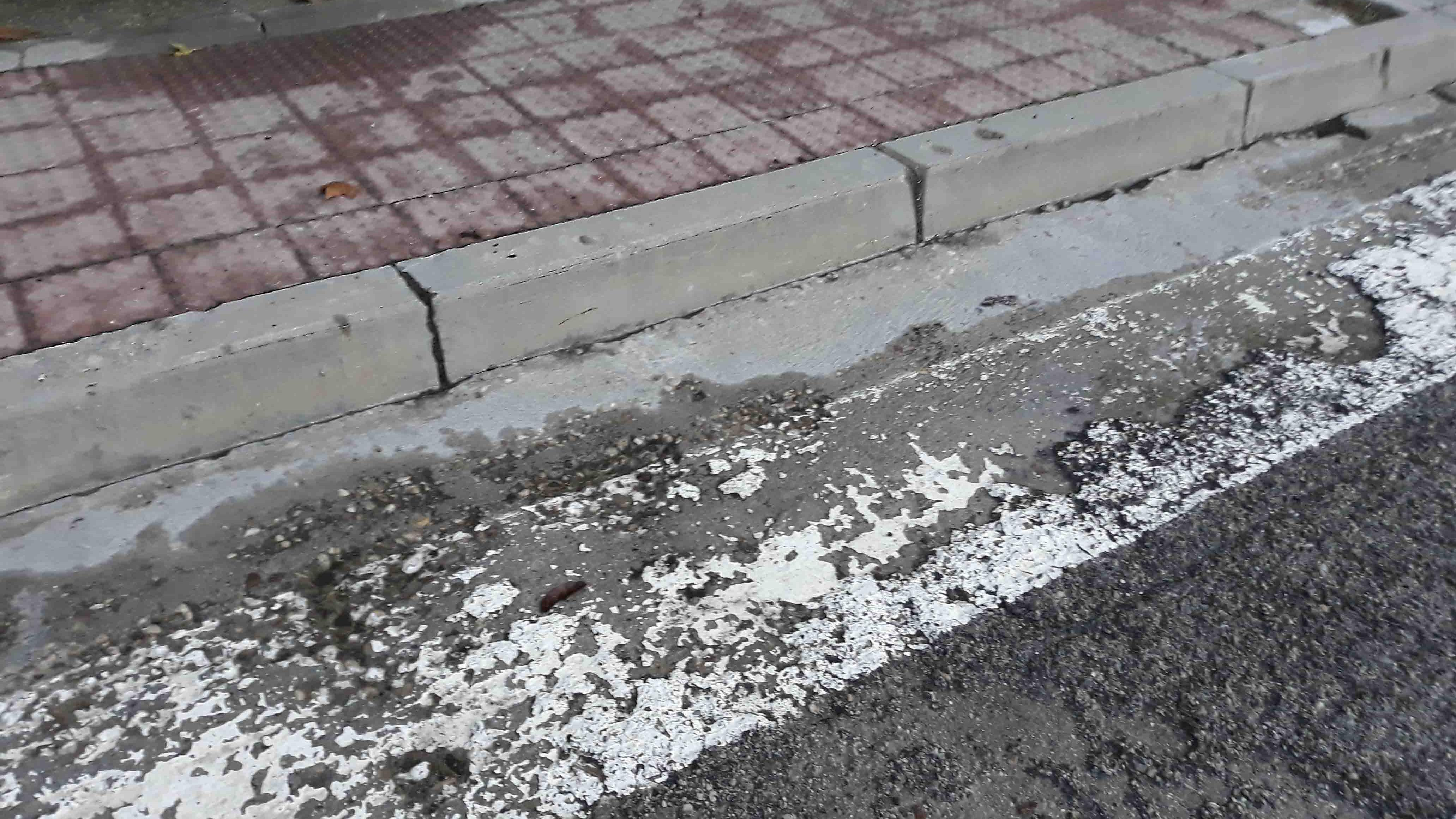 """Pasos de peatones """"SIN ESCALONES"""""""