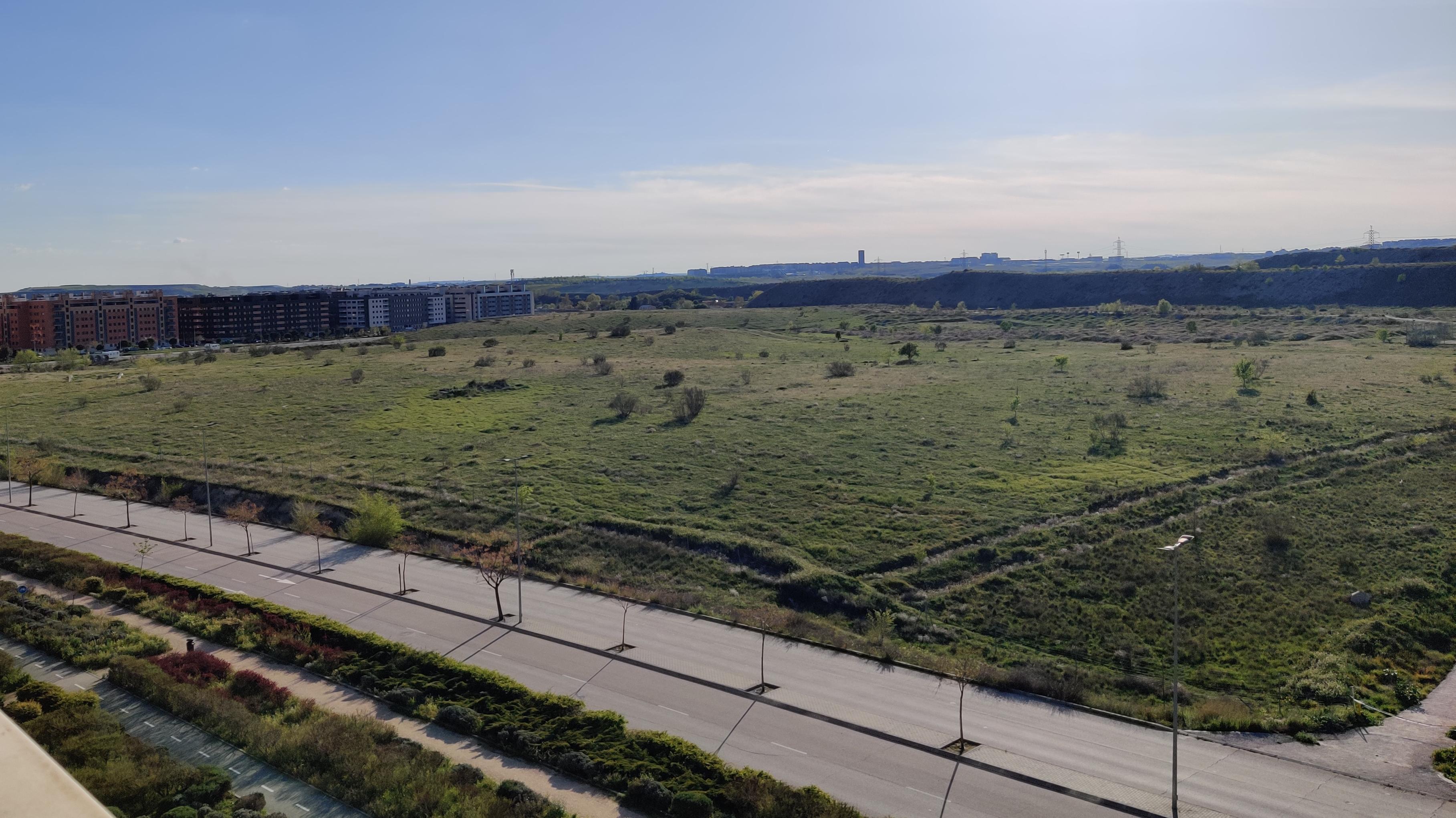 Repoblación de árboles y zona verde